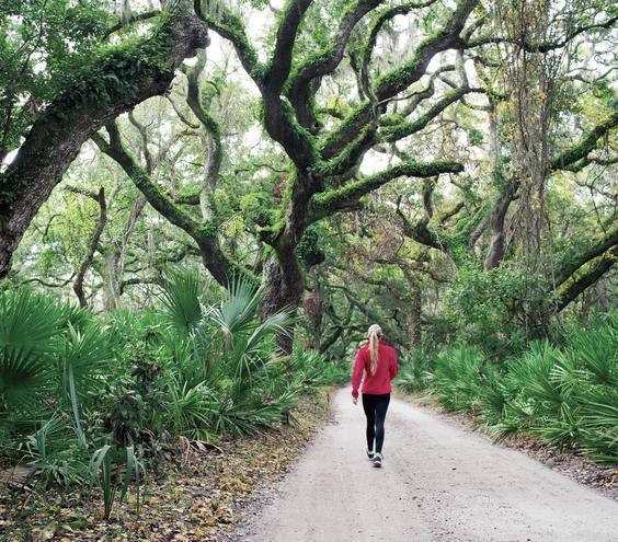 walking-jungle_gal